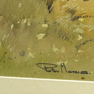ART PETER MARAIS 60 R1500 (4)